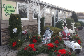 Holiday decor Edward's Garden Center